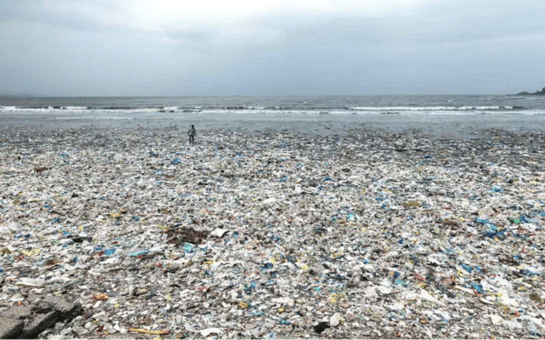 Costa Rica's single-use plastic ban