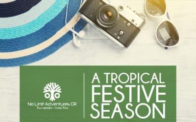 A Tropical Festive Season